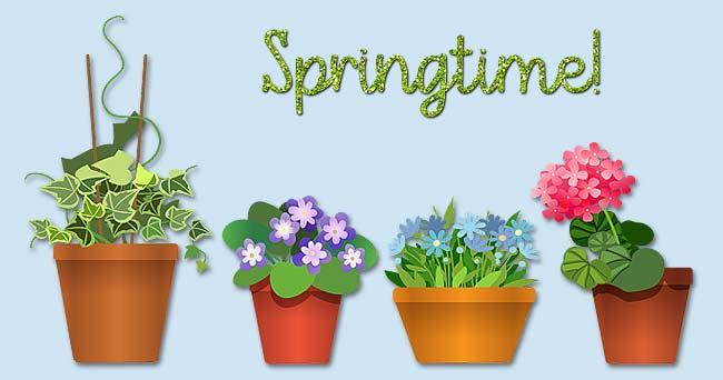 Pflanzenkreisel - Tag der Nachbarn
